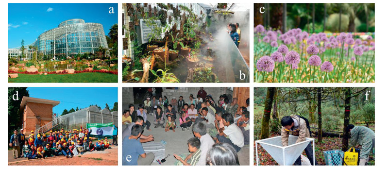 The Role Of Botanical Gardens In Scientific Research Conservation