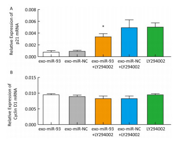 miR-93-5p Transferred by Exosomes Promotes the Proliferation of
