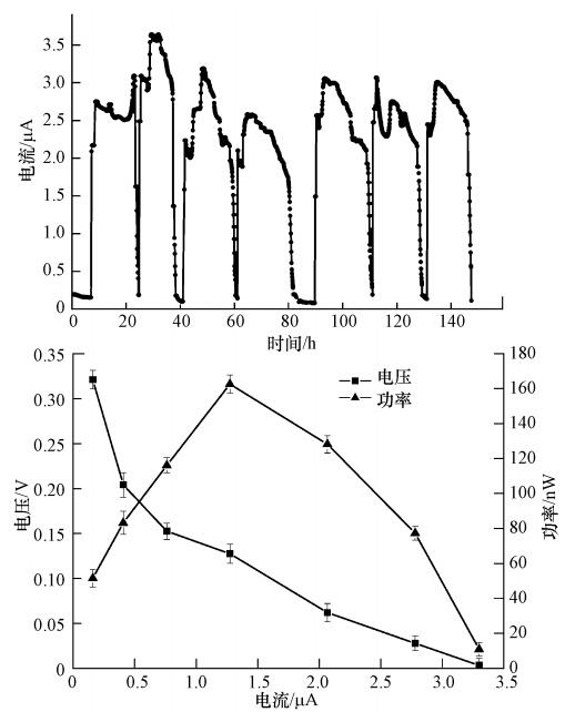 混菌接种条件下微生物燃料电池芯片的产电特性研究