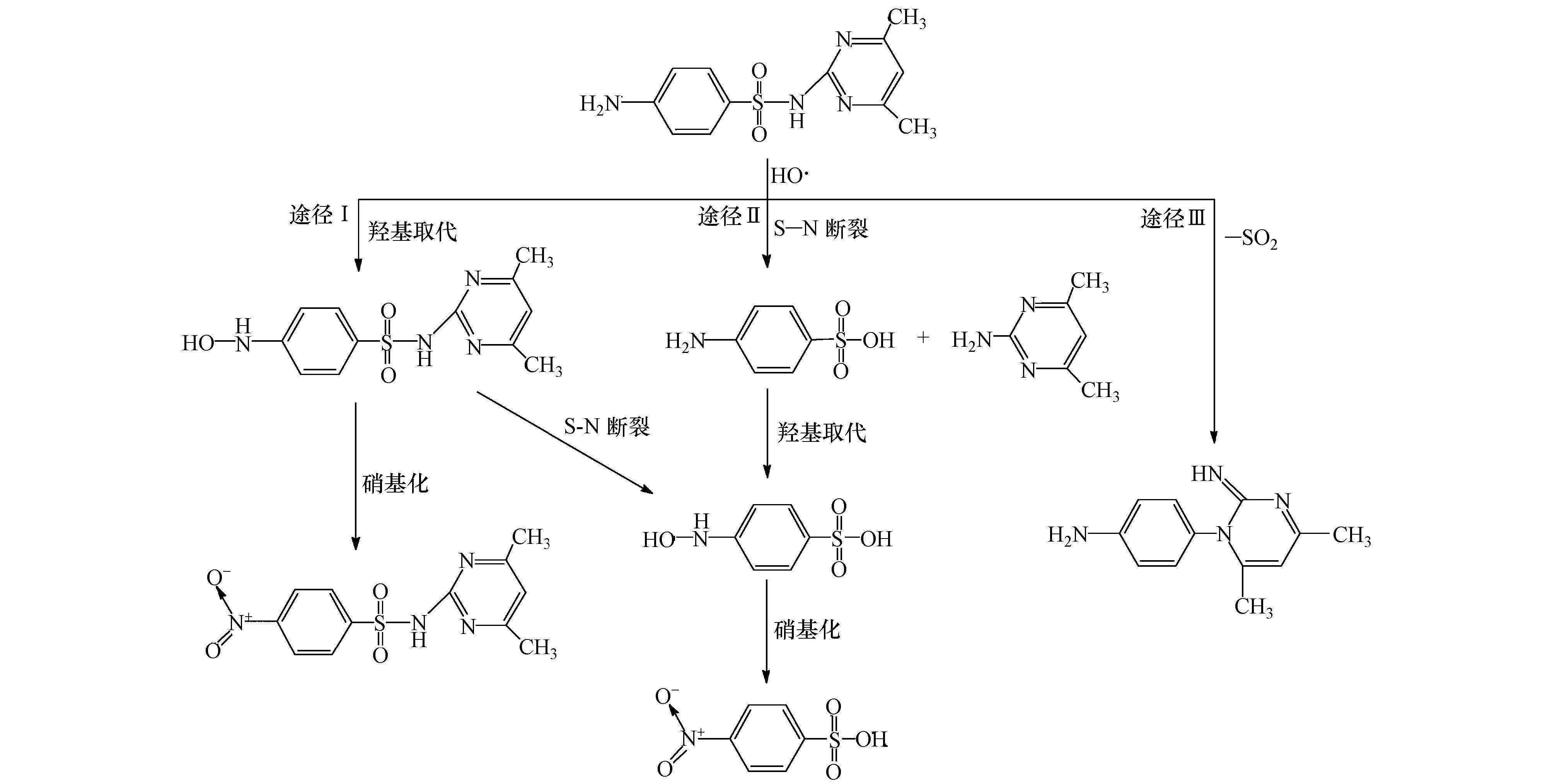 程中其分子结构上的