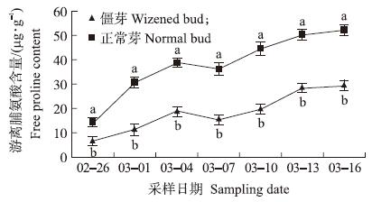 梨萌芽期僵芽和正常芽的生理差异分析 - 黄牛 - 人生价值的追求者……