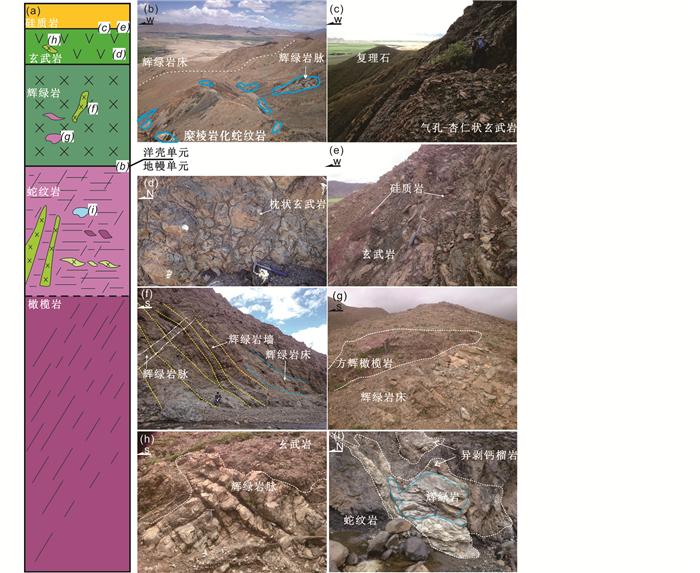 放射虫硅质岩_西藏日喀则白马让蛇绿岩:亚洲大陆边缘的小洋盆