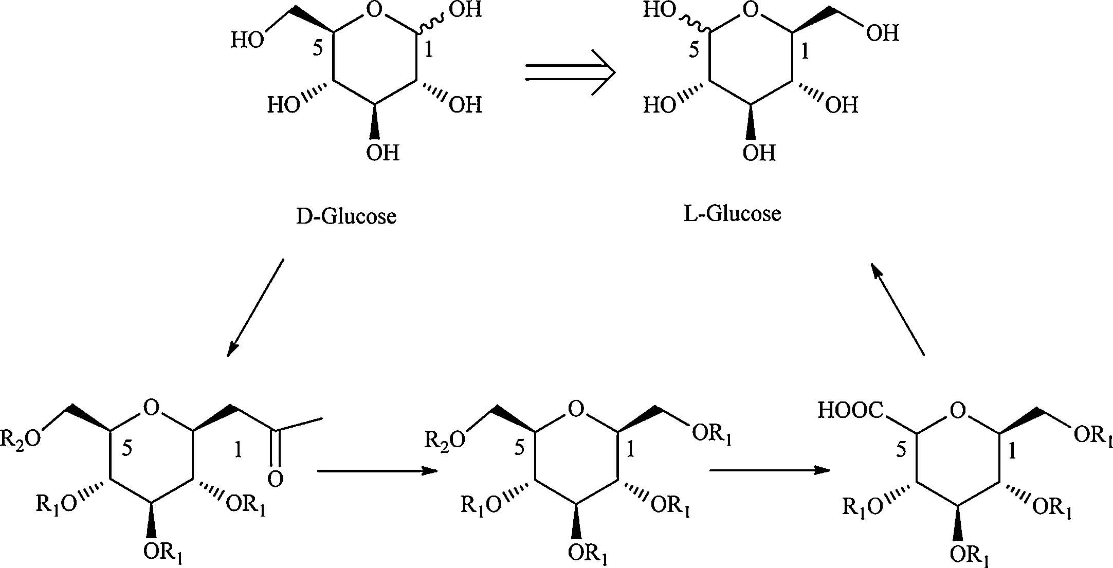 L Galactose Synthesis of L-...